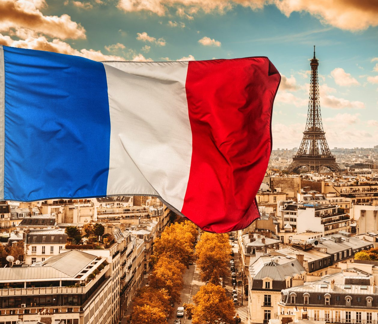 французский флаг фото найдите хоть одно